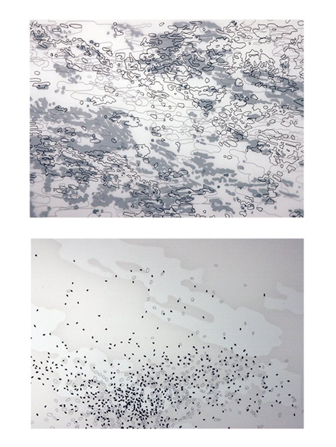 "Details from Apophenia drawing series, ink, vinyl, goauche on 3 sheets of duralar, each 22"" x 30"", 2010-11"
