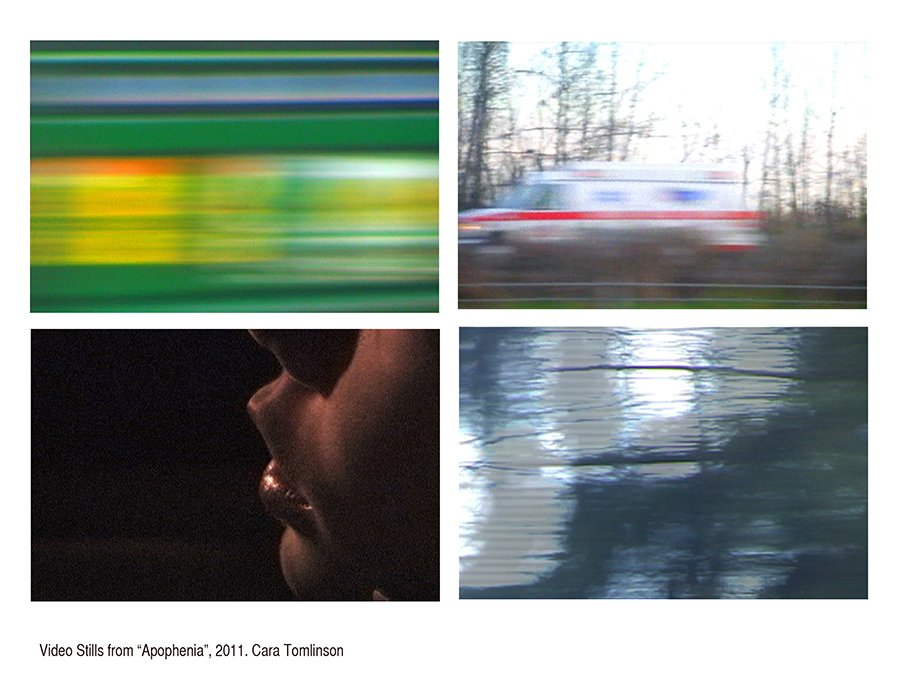 Apophenia, 17 single channel videos, details of video stills, 2011