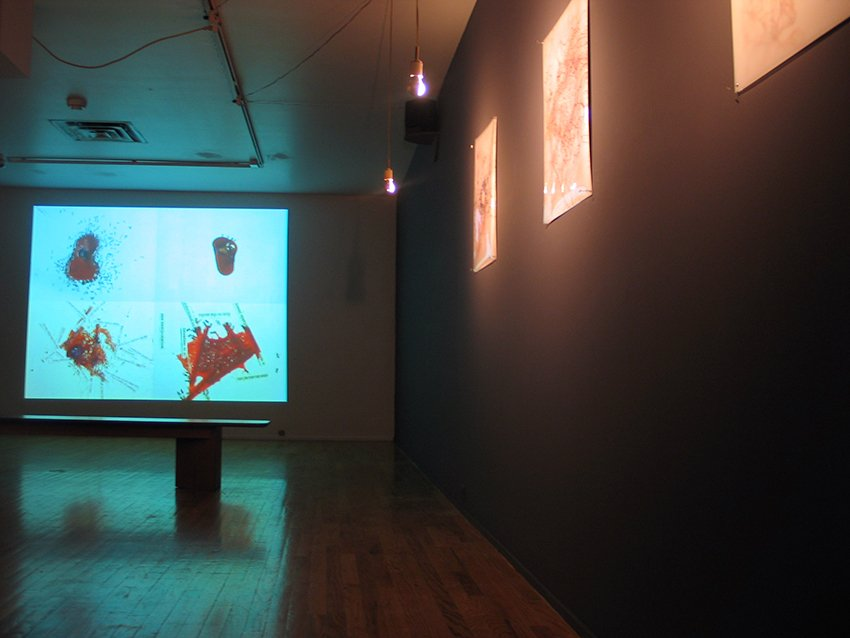 "conversation piece installation, single channel video, sound with 6 25"" x 20"" drawings, Pittsburgh Center for the Arts, 2004"